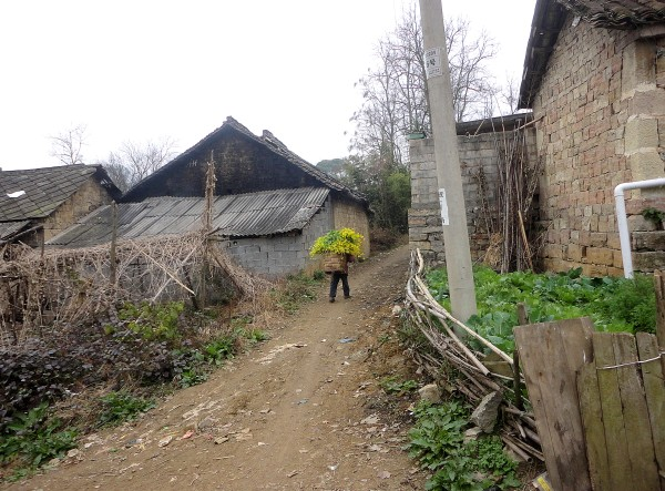 finder home is in Huang Ni Tian village (23)